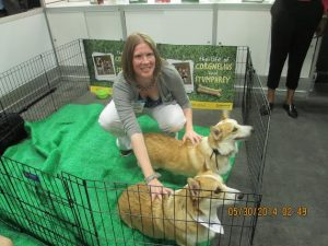 Author KT Grant gets up close and personal with the Corgis.
