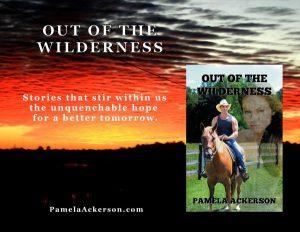 wildernessad1websmall